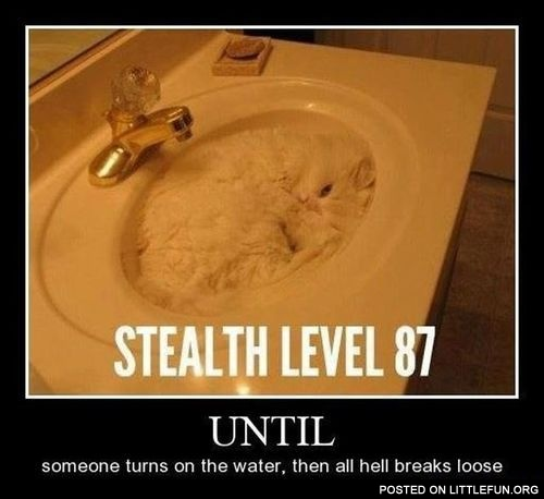 Stealth level 87