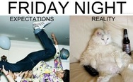 Friday night. Expectations vs reality.