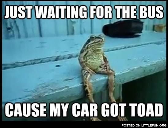 Just waiting for the bus, cause my car got toad.
