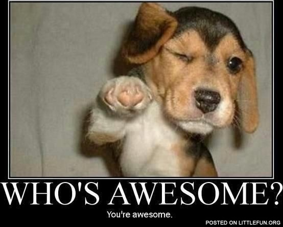 Littlefun Who S Awesome You Re Awesome
