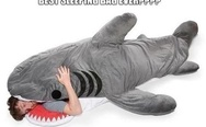 Best sleeping bag ever. Shark sleeping bag.