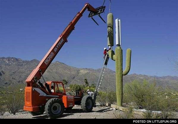 Cell Phone Tower in Arizona