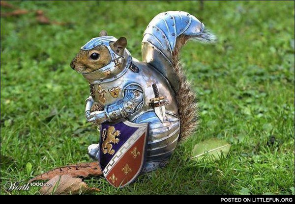 Squirrel in armor.