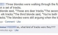 Three blondes were walking through the forest
