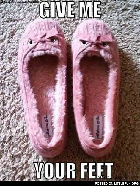 Evil slippers. Give me your feet.