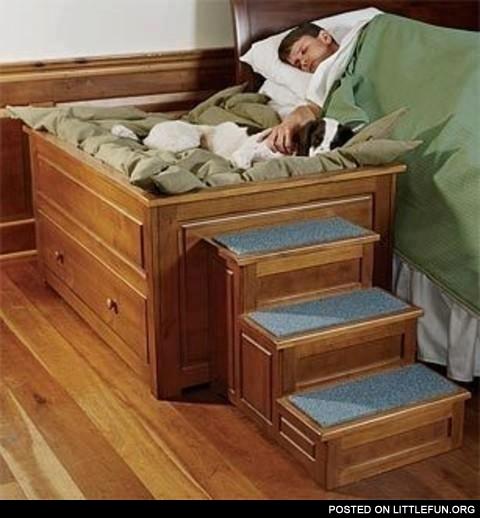 Littlefun Bedside Platform Dog Bed