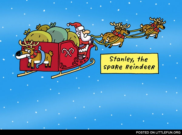 The spare reindeer