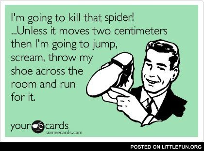 I'm going to kill that spider