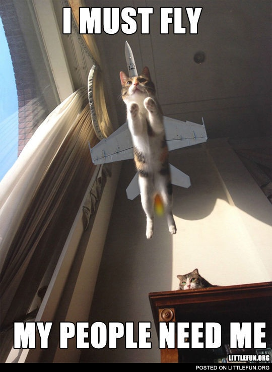 I Must Have Coffee: I Must Fly, My People Need Me