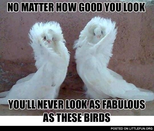 No matter how good you look