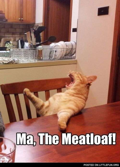Ma, the meatloaf