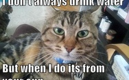 I don't always drink water
