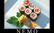 Nemo, the director's cut