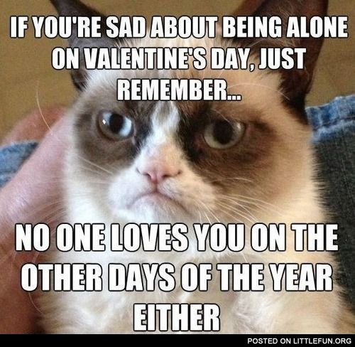 If you are sad about being alone on Valentine's Day