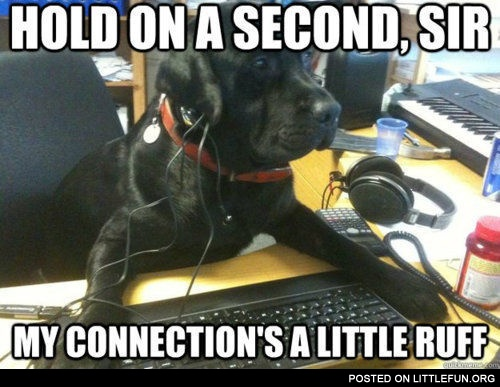 Dog Tech Support