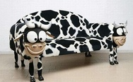 Cow couch