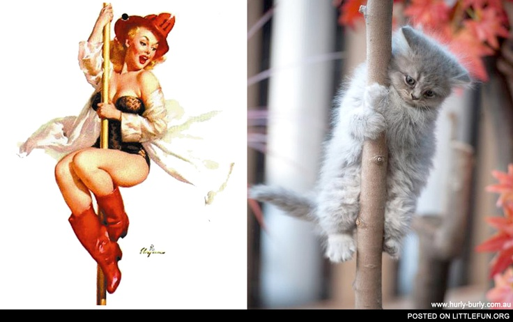 Firewoman vs. Firecat