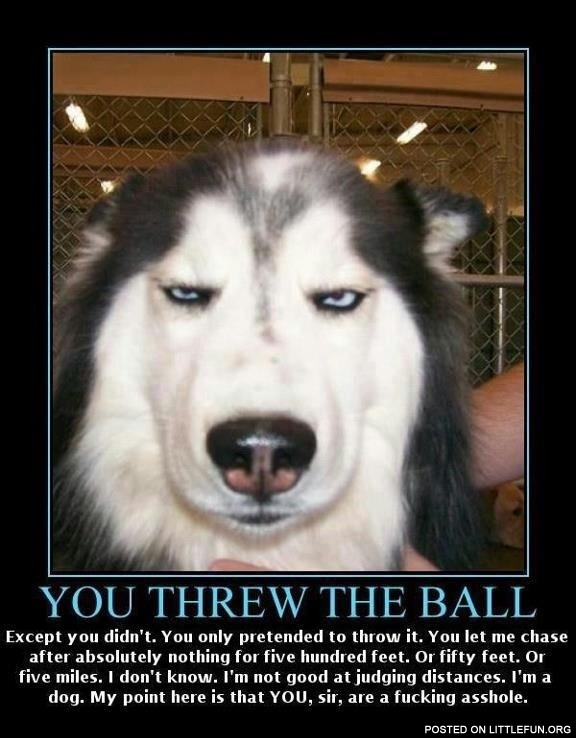 You threw the ball