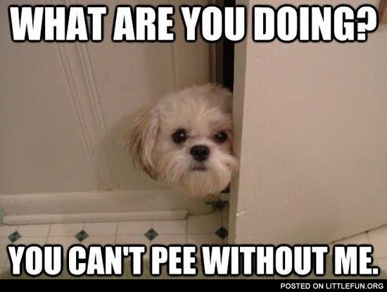 You can't pee without me