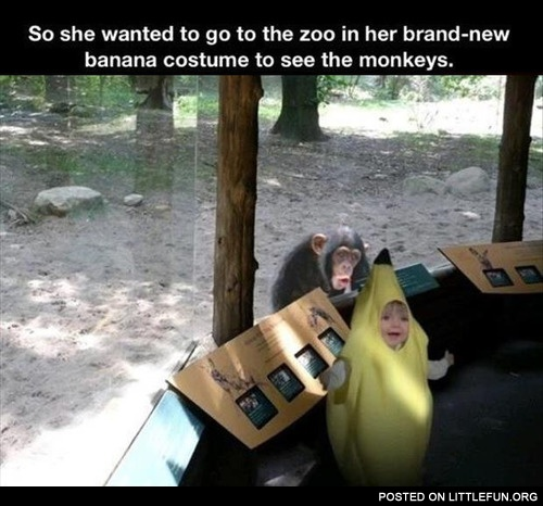 To the zoo in brand new banana costume
