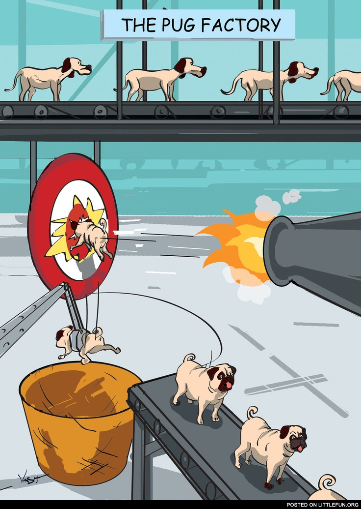 The pug factory