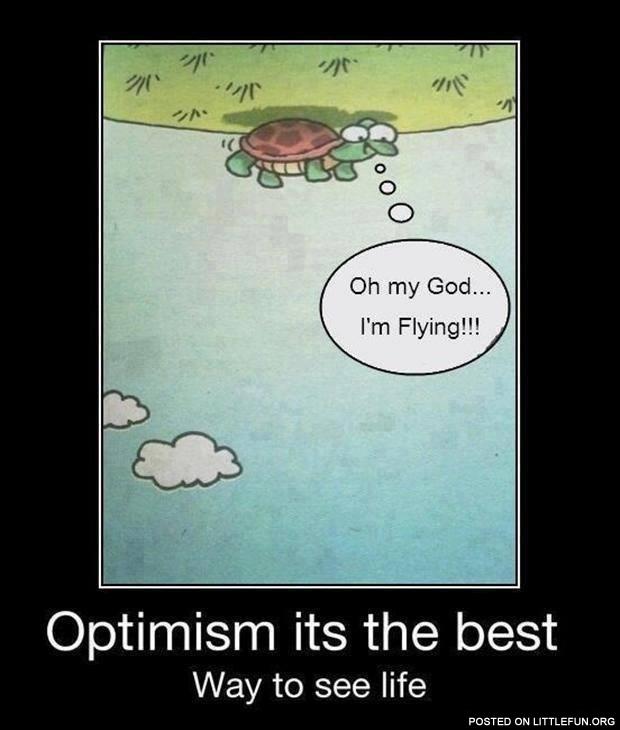 why am i optimistic