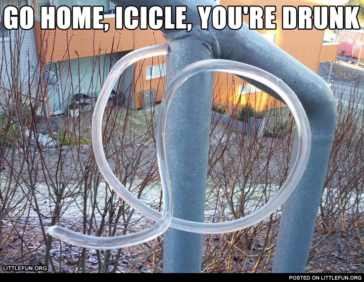 Go home, icicle, you're drunk