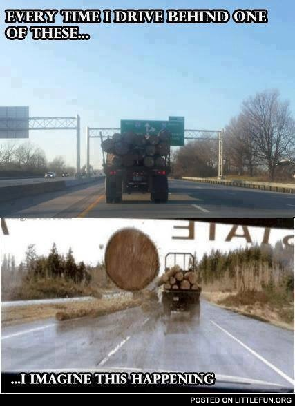 Every time I drive behind one of these