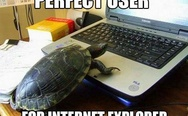 Perfect user for IE