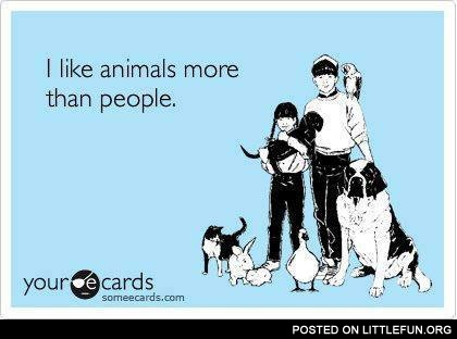 I like animals more than people