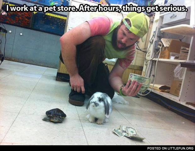 I work at the pet store