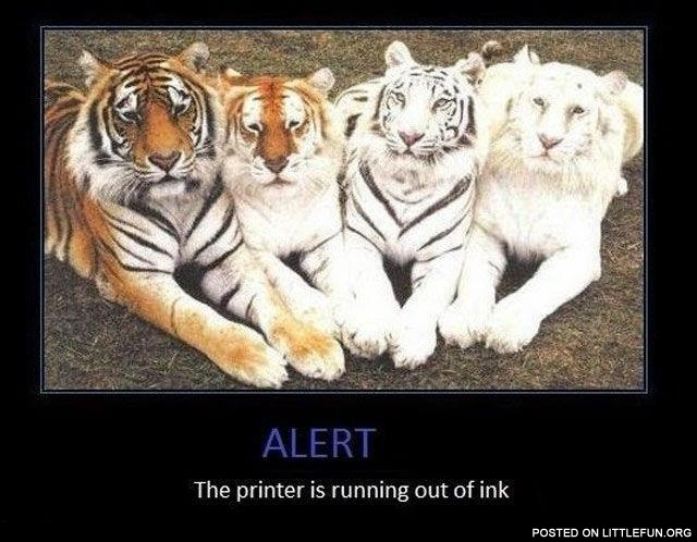 The printer is running out of ink