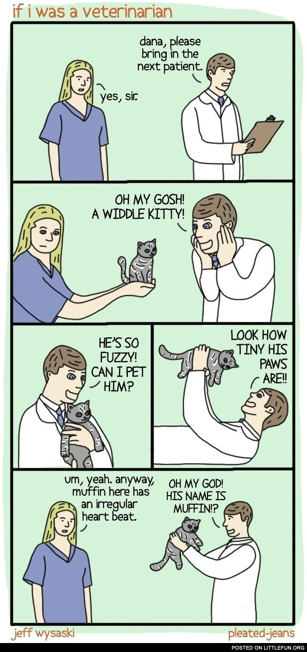 If I was a veterinarian