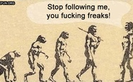 Stop following me, freaks