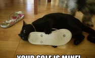 Your sole is mine
