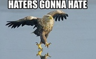 Haters gonna hate. Eagle.