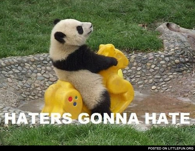 Haters gonna hate. Panda.