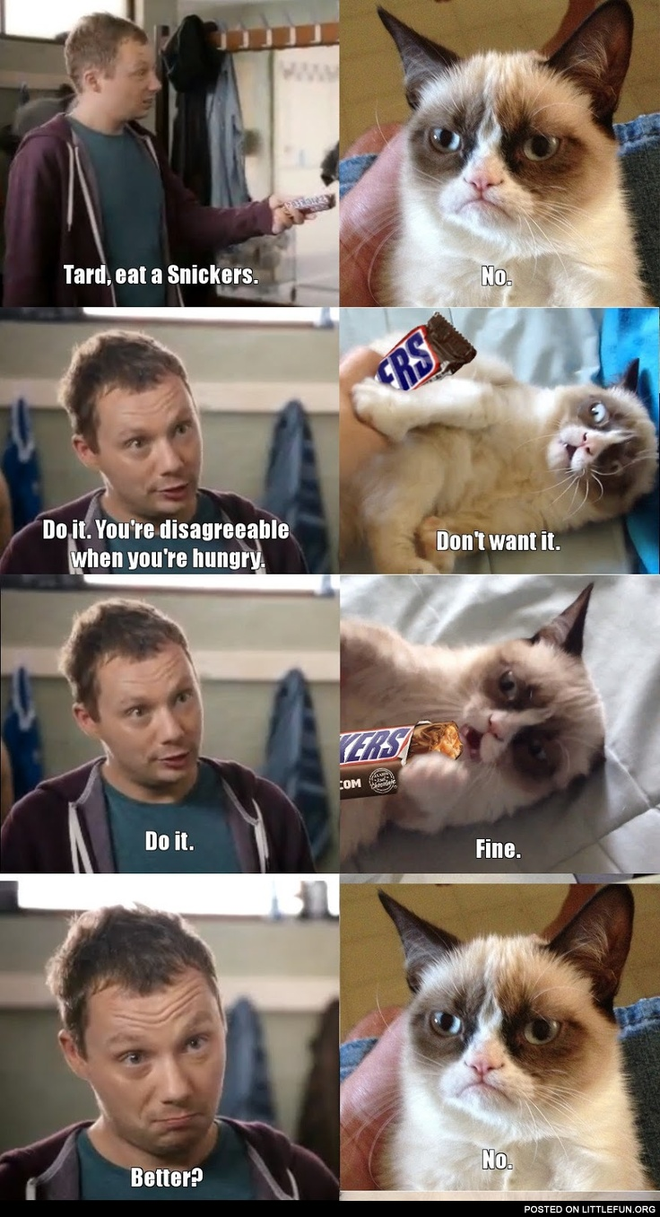 Grumpy cat, eat a Snickers