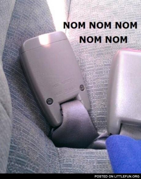 Hungry seat belt