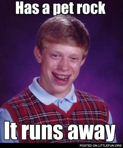 Bad luck Brian has a pet rock
