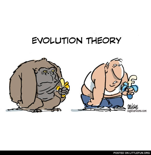 evolutionary theory Or maybe we should be honest from the very beginning about the complexity of  modern evolutionary theory and how it has grown to be very.