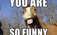 You are so funny horse