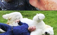 A Guy And His Pet Polar Bear