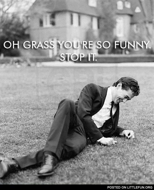 Oh grass, you are so funny