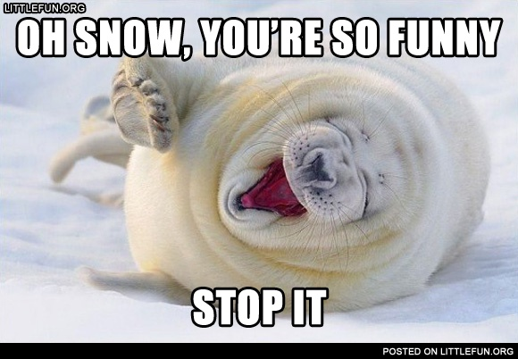 Oh snow, you are so funny