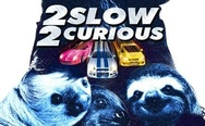 2 slow and 2 curious