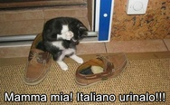 Mamma mia! Italiano urinalo! Italian shoes