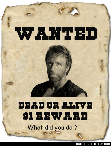 Chuck Norris is wanted.. what did you do ?