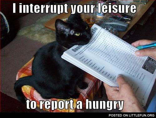 I interrupt your leisure to report a hungry