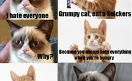 Grumpy cat, eat a Snickers. The cat version.